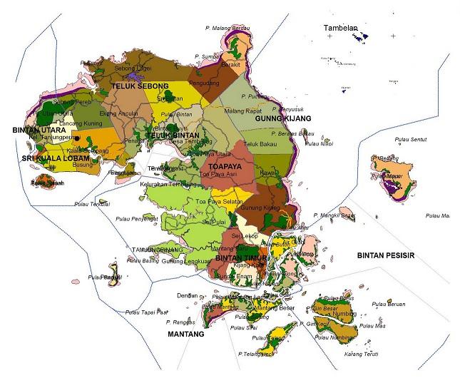Peta Kabupaten Bintan
